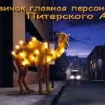 Новичок - гланая персона Питерского АА